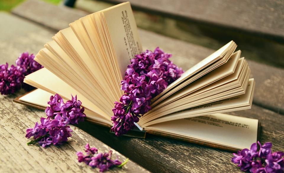 3 consejos para regalar el libro indicado